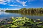 הדלתא של הדנובה Danube Delta