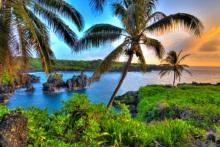 טיסות להוואי