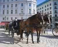 מלונות בוינה, אוסטריה