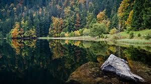 דילים ליער השחור, גרמניה